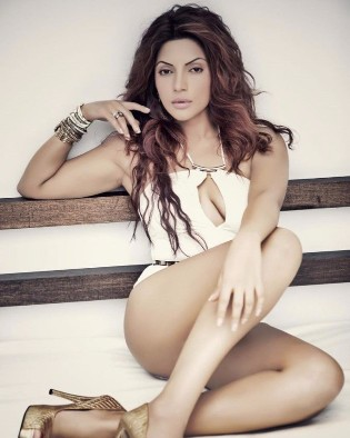 Shama Sikander Latest Hot and Spicy Photo Gallery
