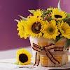 20 pequenos arranjos de flores