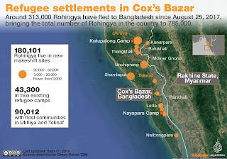 Catastrofe sui rohingya