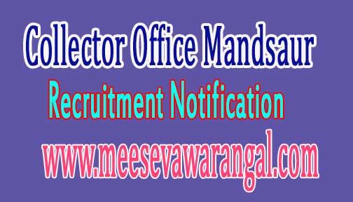 Collector Office Mandsaur Recruitment Notification 2016