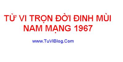 Tu Vi Dinh Mui 1967