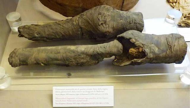 Misteri Lutut Mumi Dari Ratu Nefertari