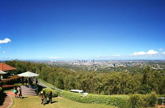 mt coot view