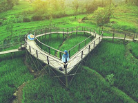 THE BRIDGE OF LOVE PRING WULUNG, EPIC DESTINATIONS IN PURBALINGGA