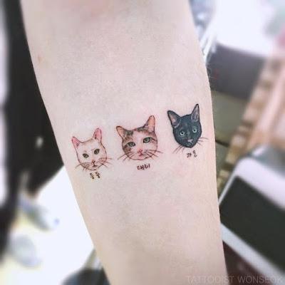 Confesiones De Un Gato Lindos Tatuajes De Gatitos Y Que Mensaje Nos