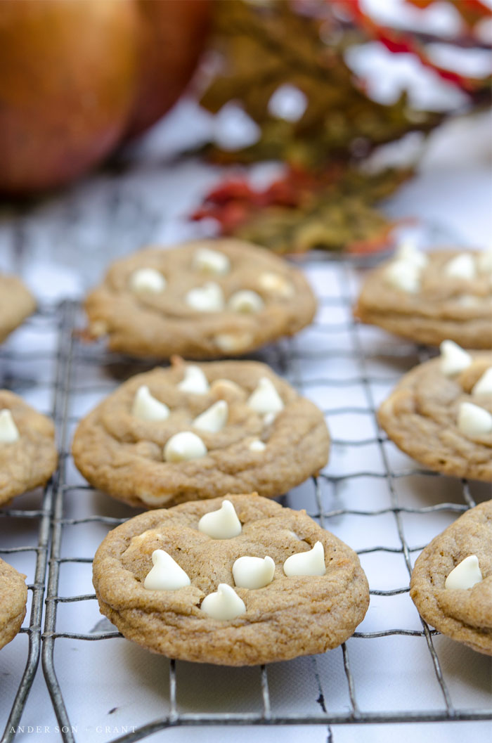 Pumpkin Spice Chocolate Chip Cookies....a perfect recipe for fall baking.  |  www.andersonandgrant.com