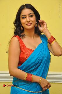 Telugu Actress Vaibhavi Stills in Blue Saree at Www.Meena Bazaar Movie Opening  0004.JPG
