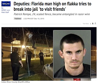Image and headline of Florida Man breaking into prison on drugs