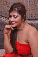Payal Ghosh Looks Stunning in Red Half Shoulder Gown 036.JPG