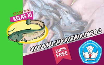 Download RPP PKWU SMA Kurikulum 2013 Kelas XI Revisi 2016