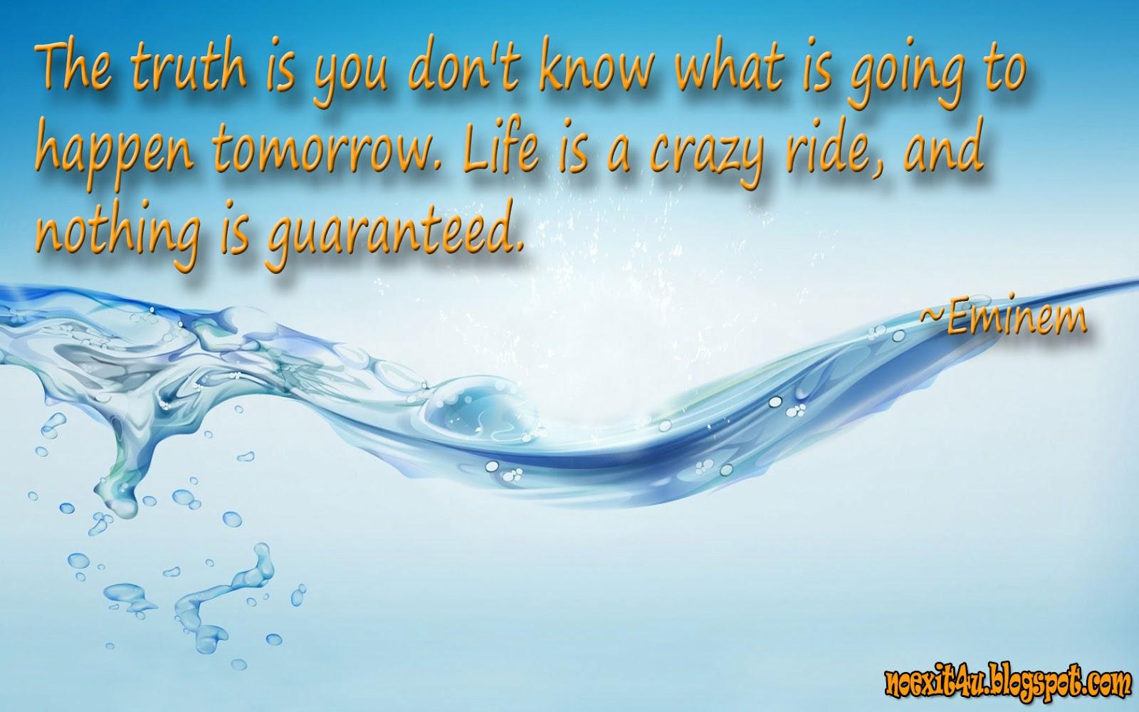 LIFE IS A CRAZY RIDE WALLPAPER