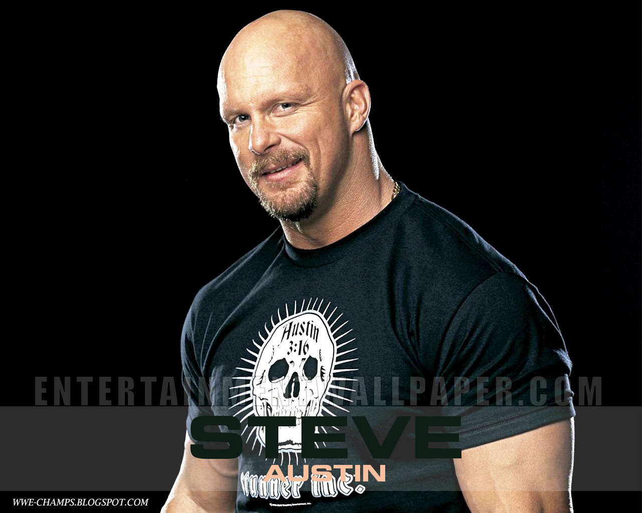 The Undertaker Hd Wallpaper Wwe Champs Stone Cold Steve Austin What