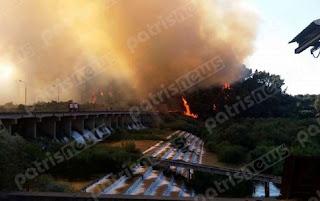Φωτιά σε δασική έκταση στην Αλφειούσα