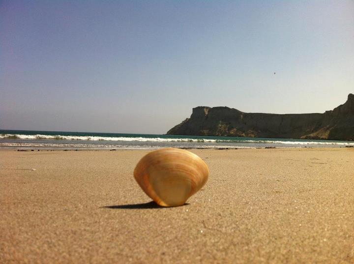 Image result for jiwani coast