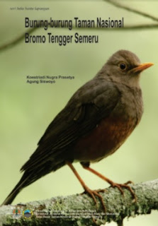 burung di taman nasional bromo tengger semeru