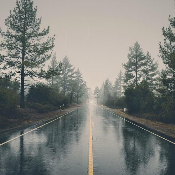 Rainy Road Wallpaper Engine