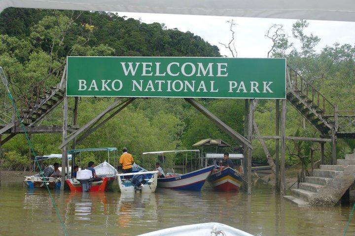 Image result for taman negara bako