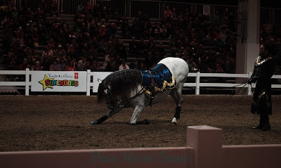 Pure Horse Sense Blog- Medieval Times at the RAWF