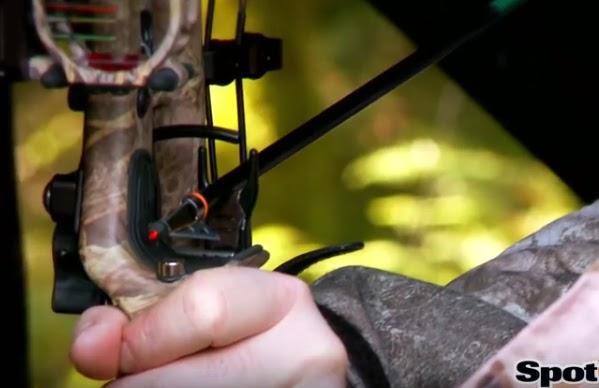 Blog de chasse au chevreuil l 39 arc pointe de chasse avec for Comment utiliser un laser