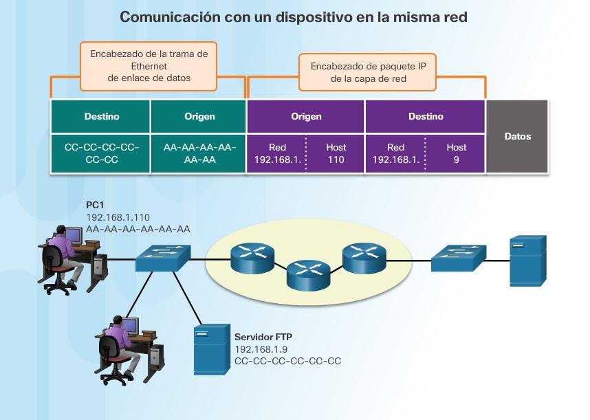 Acceso a los datos - CCNA V6.0