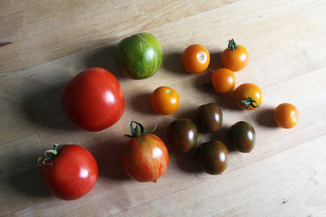 tomatoes, heirloom tomatoes, unusual tomatoes, garden, harvest, Anne Butera, My Giant Strawberry