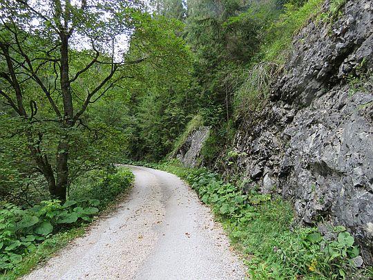 W górę doliny Veľké Zajfy.