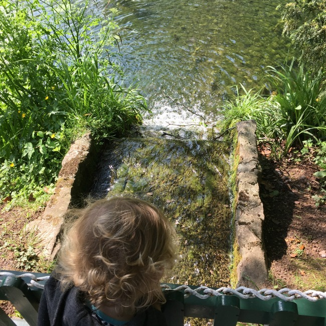 #MySundayPhoto Number 22 toddler looking at stream