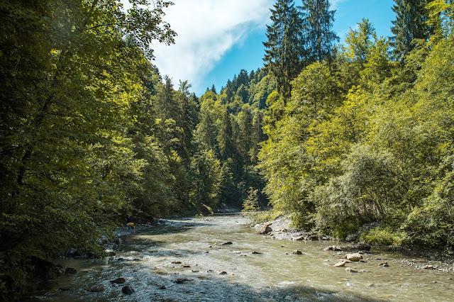 Rappenlochschlucht Staufensee Dornbirn Wandern-Vorarlberg 05
