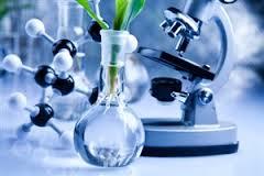 Pengertian Bioteknologi dan Dampak Produk Biotekologi Terhadap Kehidupan