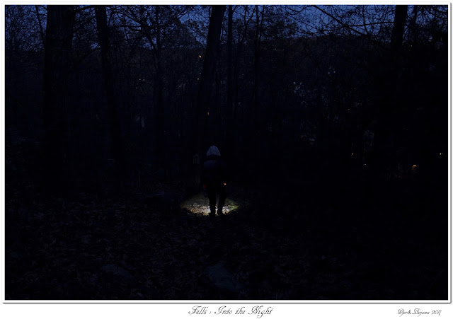 Fells: Into the Night