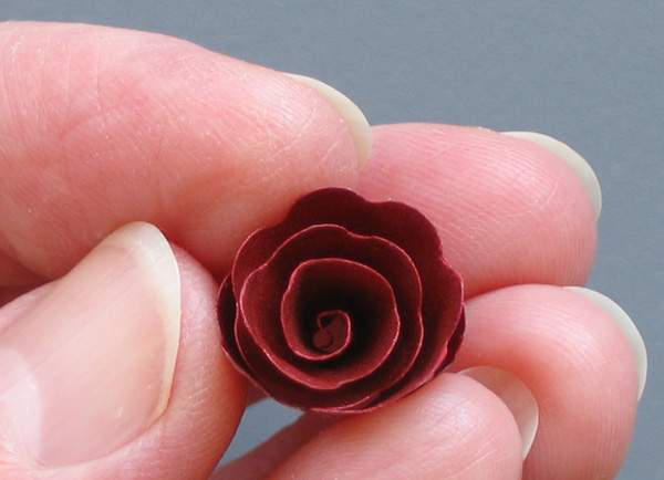 spiral paper red rose