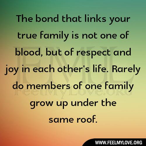 Family Bond Quotes. QuotesGram