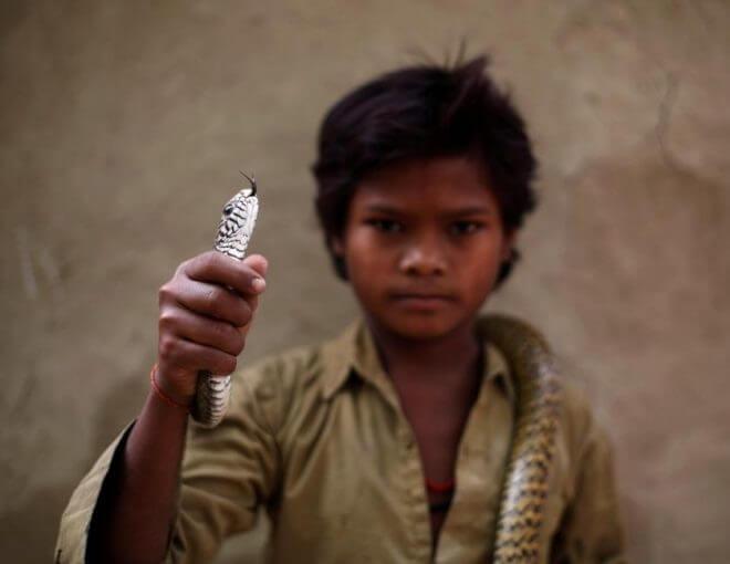 Perkampungan Jogi Dera Yang Menjadikan Ular Sebagai Haiwan Peliharaan