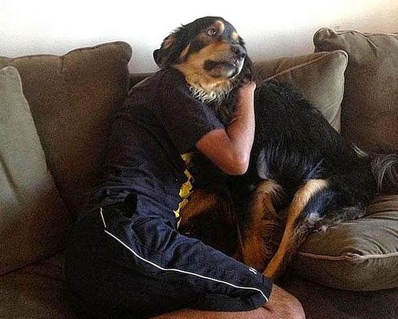 abraço do Cão