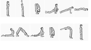 yoga stepstep surya namaskar sun salutation