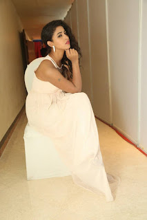 Actress Pavani Stills in Sleeveless Long Dress 0028