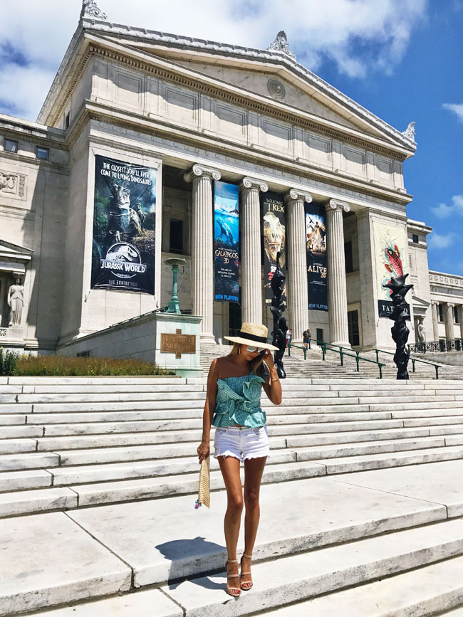 Field Museum Chicago, How to Style a Ruffle Top, Green Ruffle Top