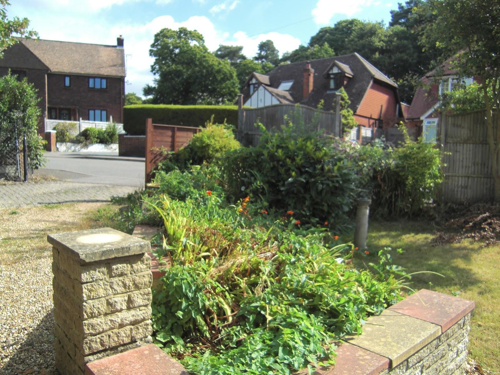 Rear Garden Crowthorne, Berkshire   Before