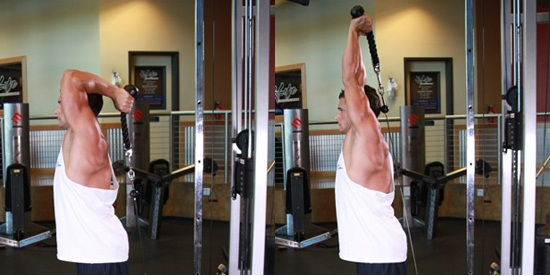 bodybuilding: Cable Rope Overhead Triceps Extension