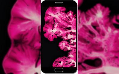 Pink Coral Ink Art Macro - Fond d'Écran en FHD pour Mobile