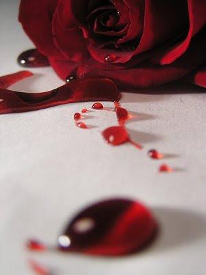Belladonna: Menstruation