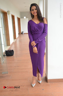 Actress Rakul Preet Singh Latest Stills in Beautiful Long Dress  0134.JPG
