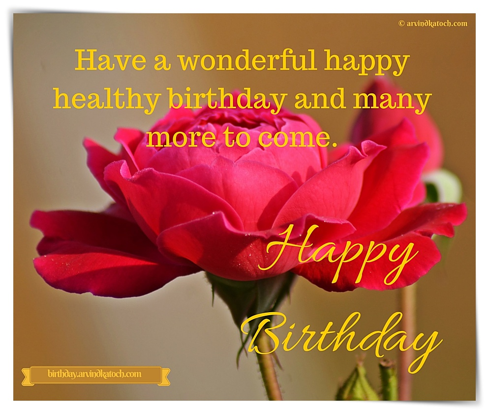 Happy Birthday Card Image Have A Wonderful Happy Healthy Birthday