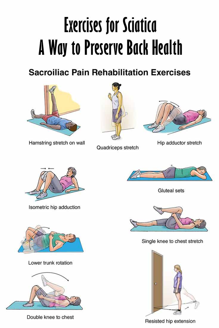 Image Result For Best Bed For Back Pain