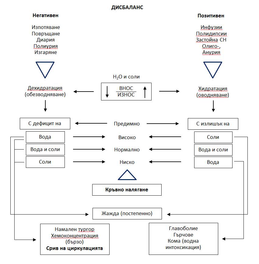 Основни видове нарушения на водно-солевия баланс в организма