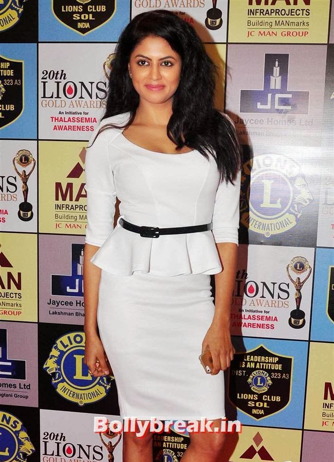 KAvita Kaushik, Celebs at Lions Gold Awards 2014