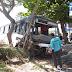 Em Parnaíba, ônibus sobe canteiro central, derruba coqueiro provoca estragos