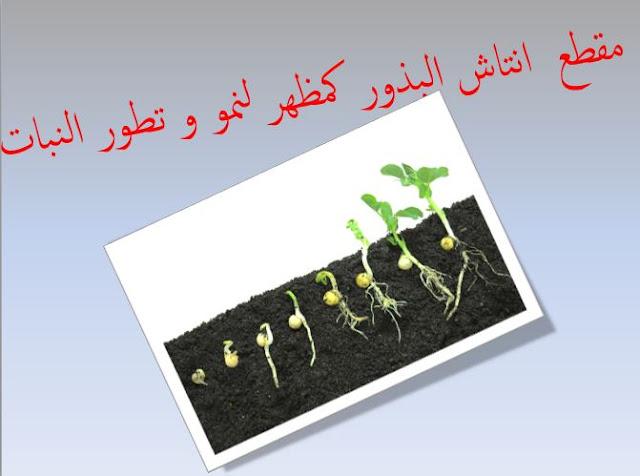 مقطع انتاش البذور للسنة الاولى متوسط الجيل الثاني
