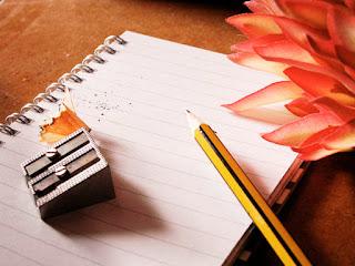 help me write professional reflective essay online