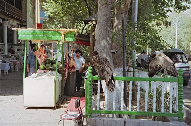 Ouzbékistan, Samarcande, chaïkhana Lyabigor, rue Registan, © Louis Gigout, 1999